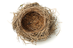 Empty Nest Syndrome